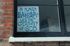 diversity by estherase
